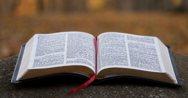 Confidence In The Text And Canon Of Scripture